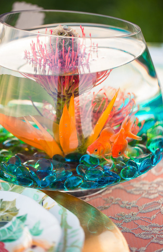 fish in a bowl as a centerpiece