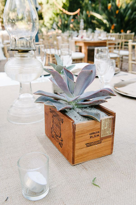 Diy Succulent Centerpiece