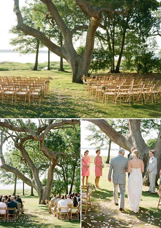 ceremony under a big tree