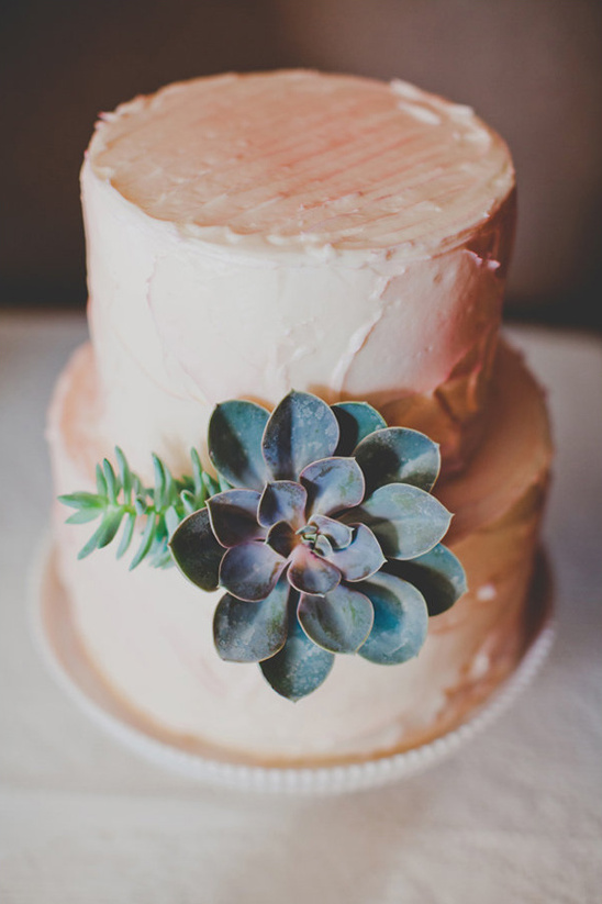 simple succulent accented wedding cake