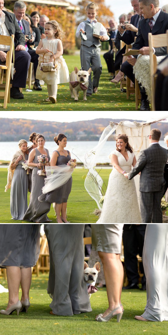 outdoor fall wedding ceremony with wedding dog