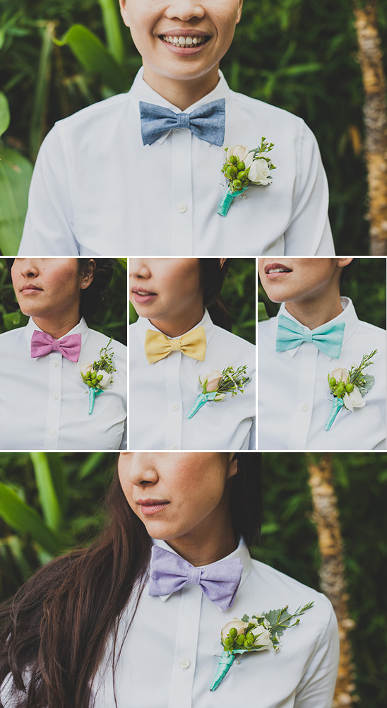 rainbow bow ties