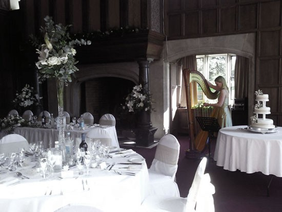 How A Harpist Can Enhance Your Wedding: 5 Top Tips From Alive  Network's Wedding Harpists