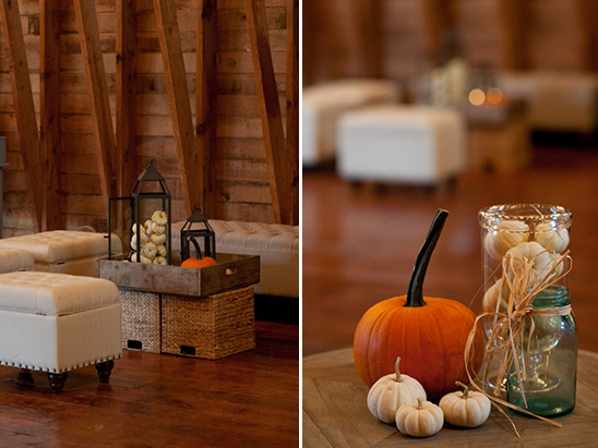 assorted pumpkins used for decor