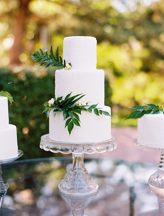 textured white cake with greenery