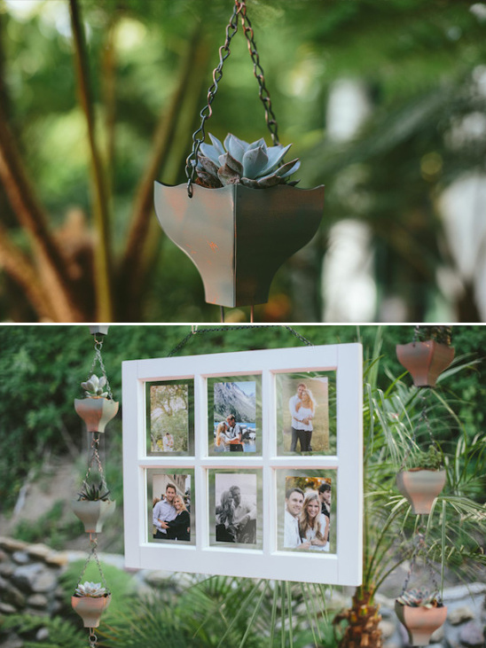bride and groom photo display with hanging succulents