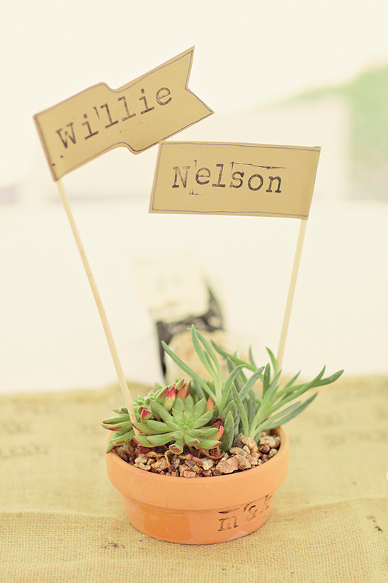 willie nelson table name flags