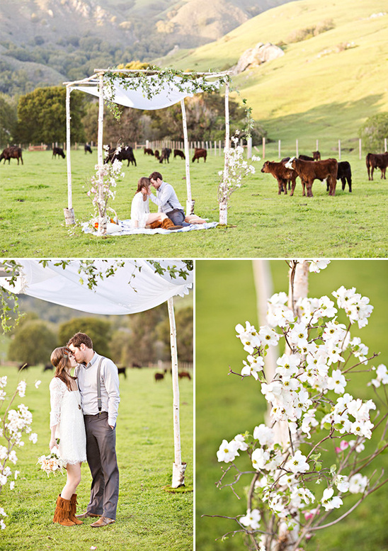wedding in a pasture