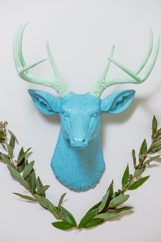 blue and green buck
