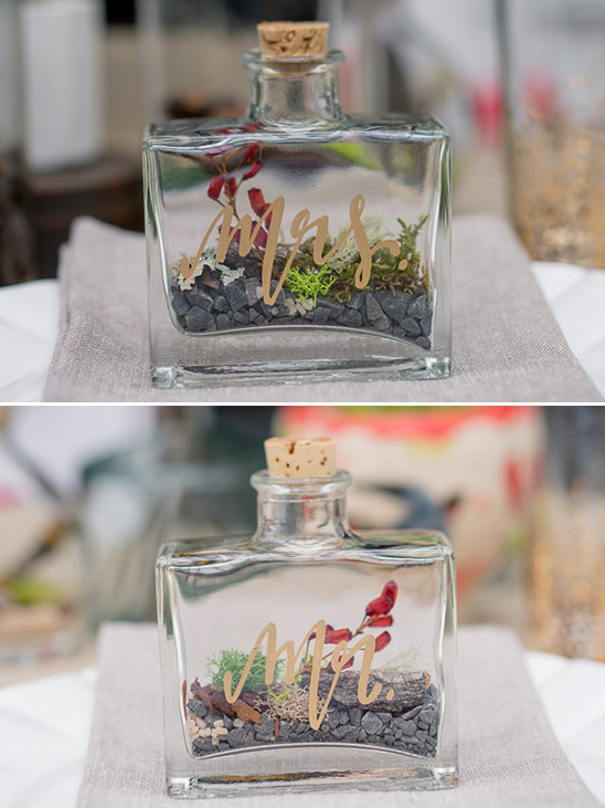 mr and mrs terrariums