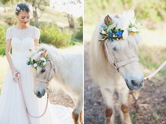wedding pony with floral crown