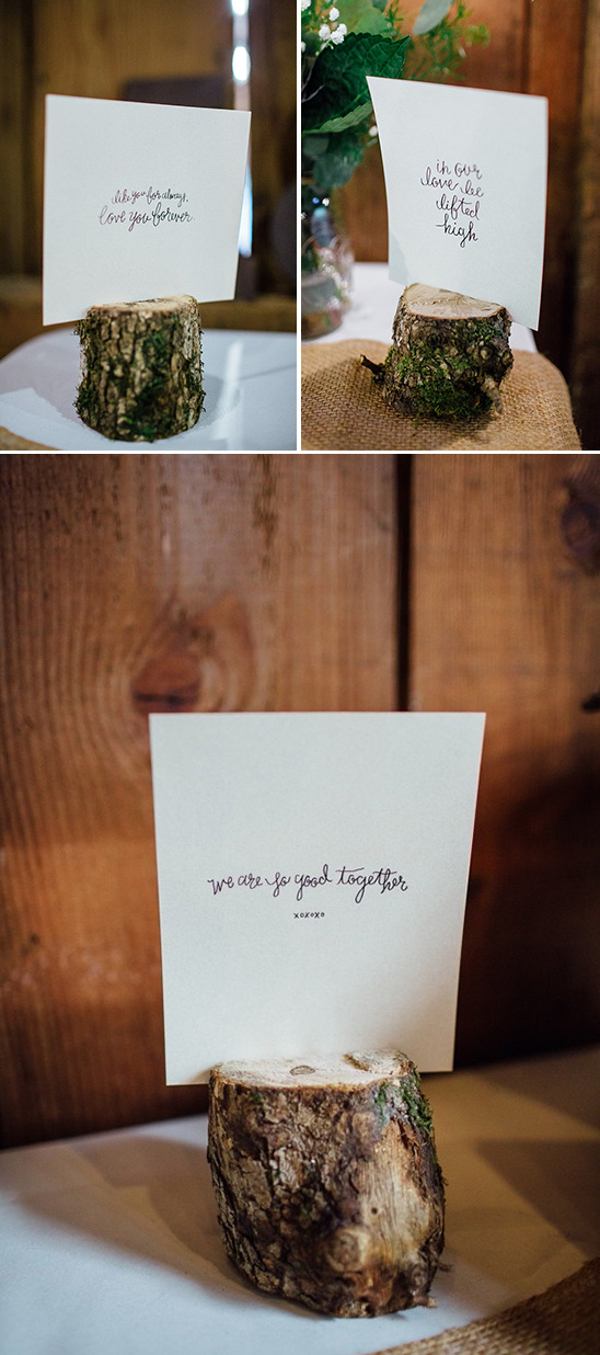 wood stump love quotes from the bride