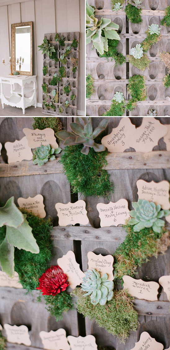 rustic succulent and moss covered escort card station