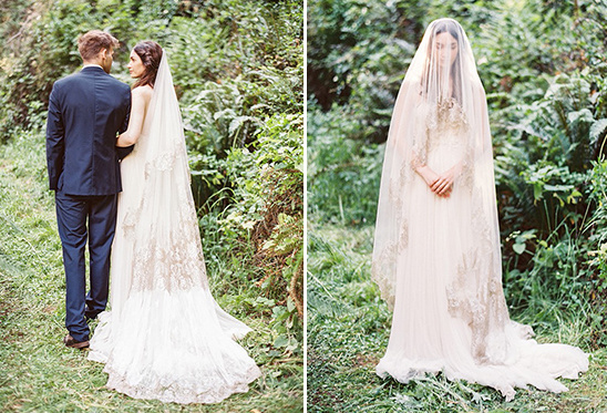 gorgeous long veil