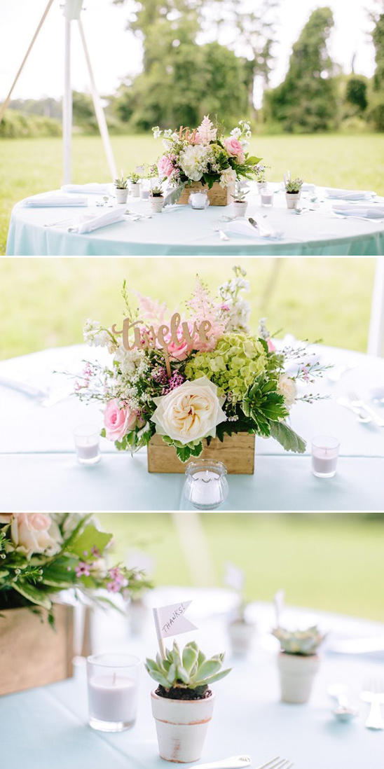 succulent favors and boxed floral centerpieces