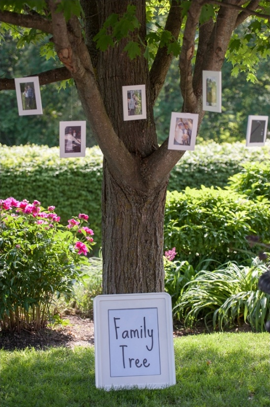 family tree wedding photo display