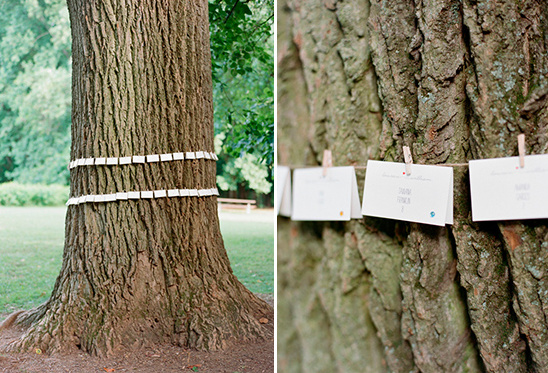 escort cards wrapped around the tree