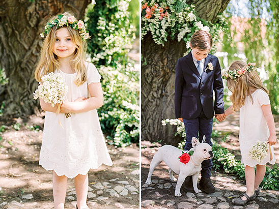 adorable flower girl ring bearer and wedding dog
