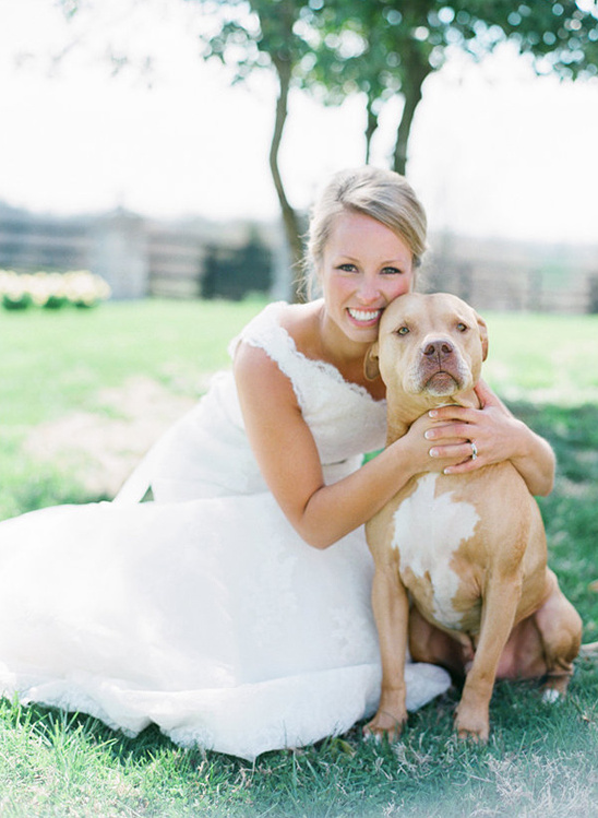 bridal portrait with dog