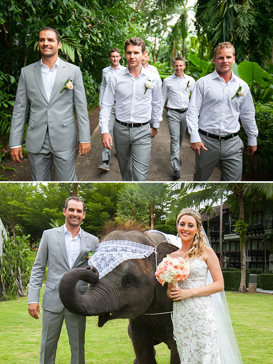 white and grey groomsmen and wedding elephant