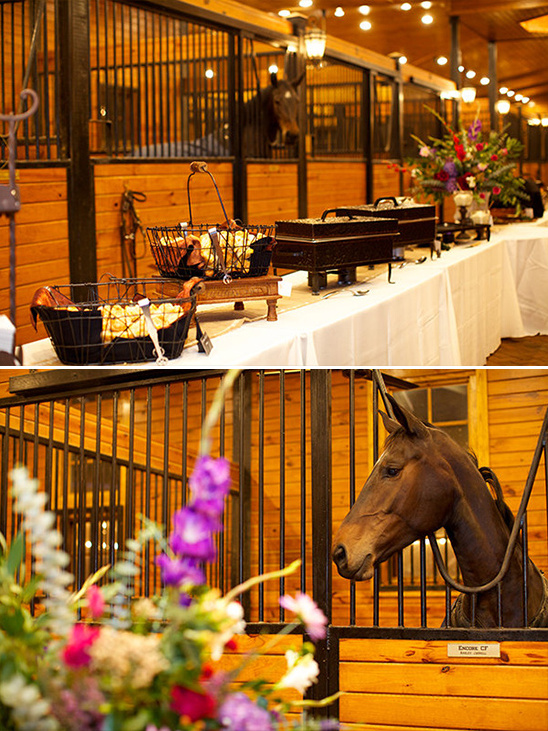 dine with the horses