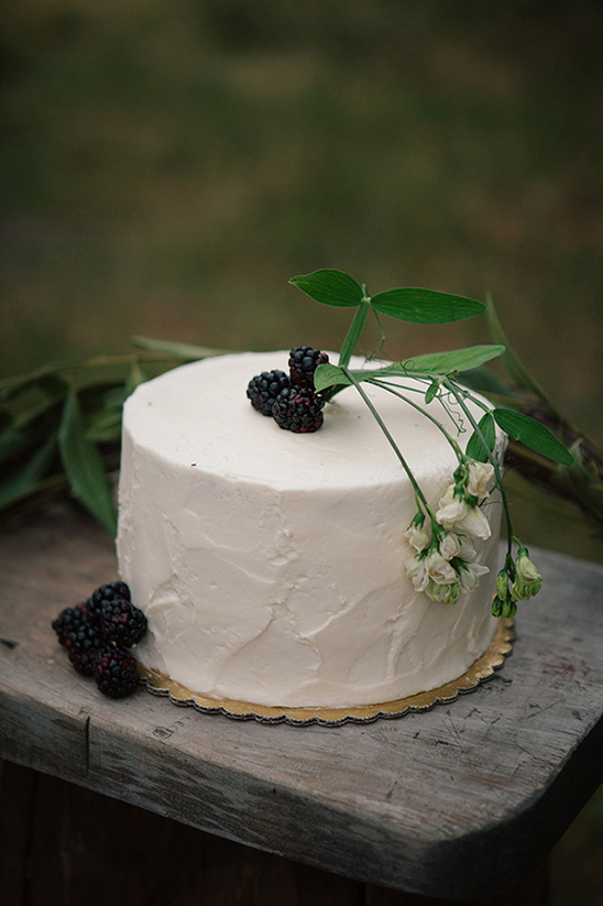 clean and fresh berry topped cake