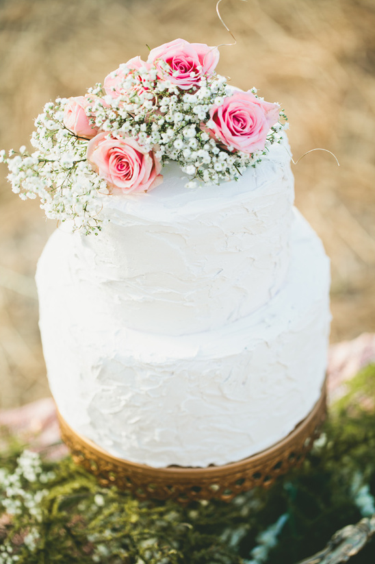 rose and babys breath topped cake