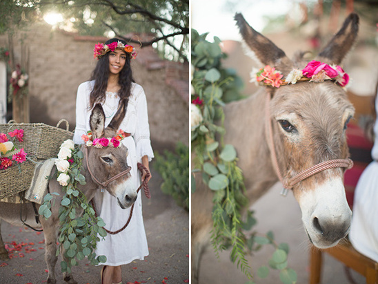 wedding donkey with floral crown