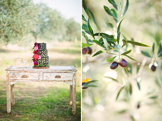 cake table in an olive orchard