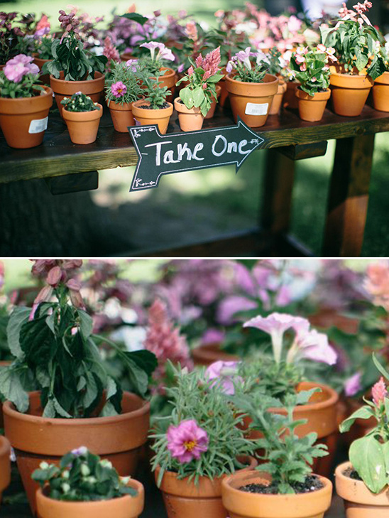 flower pot wedding favor