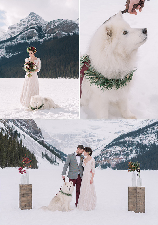 white wedding dog @weddingchicks
