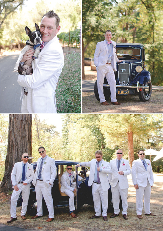 wedding dog and searsucker groomsmen suits @weddingchicks