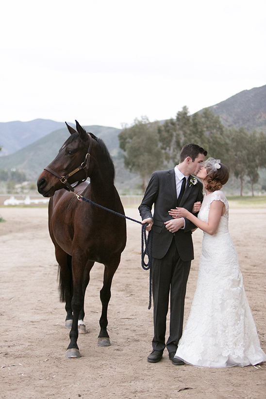 chocolate brown horse @weddingchicks