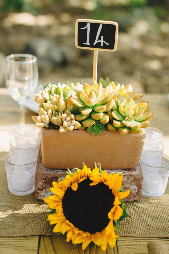 succulent and sunflower centerpiece @weddingchicks