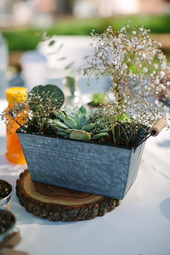 succulent and babys breath centerpiece @weddingchicks