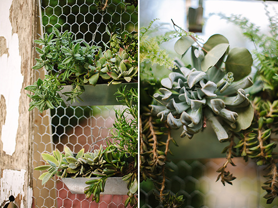 succulent decor @weddingchicks