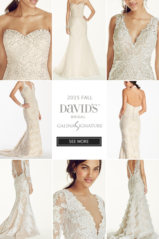 Davids bridal fall 2015 galina signature collection davids bridal fall 2015 galina signature collection weddingchicks junglespirit