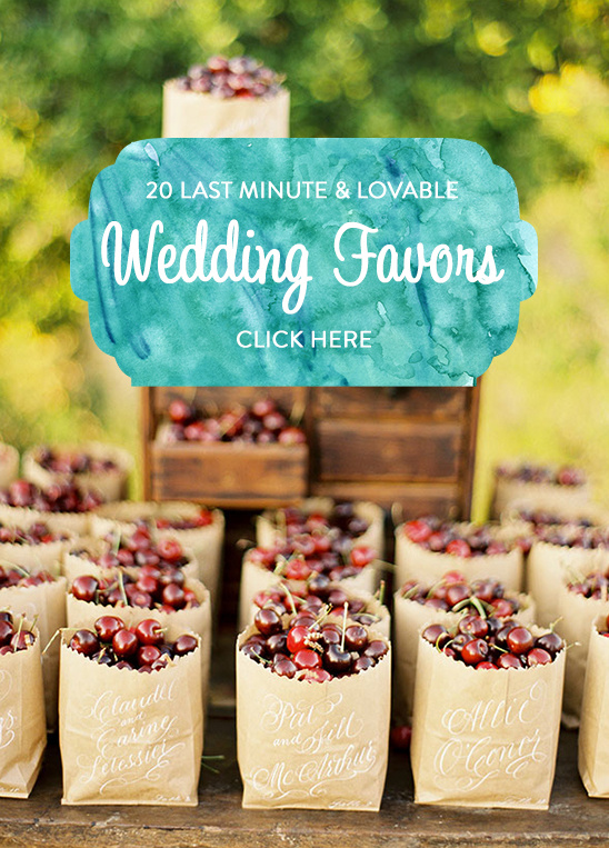 lovable wedding favors