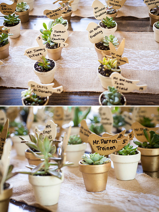 succulent escort cards @weddingchicks