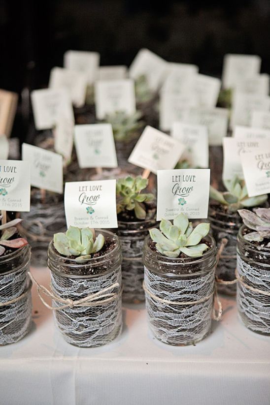 succulent wedding favors @weddingchicks