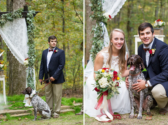 wedding dog @weddingchicks