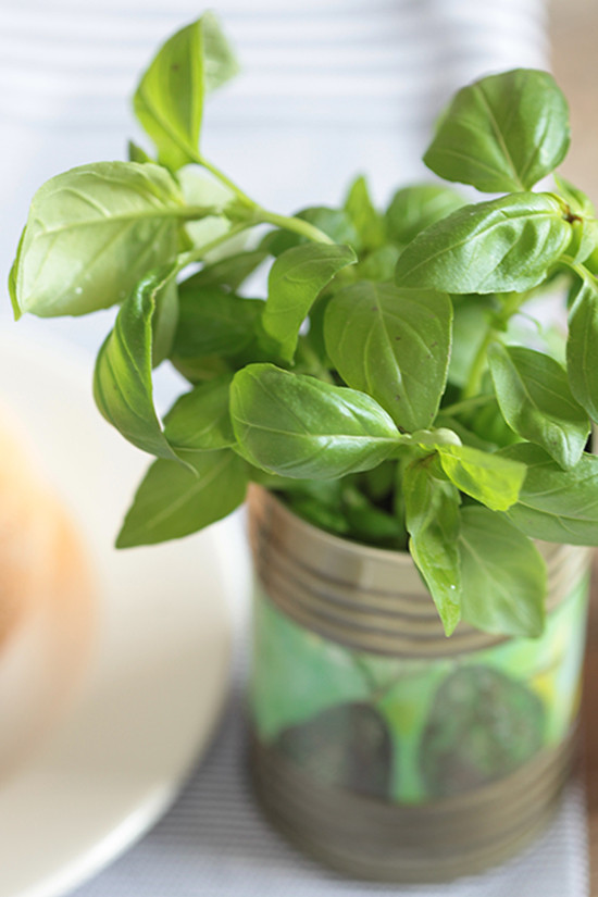 basil leaves @weddingchicks