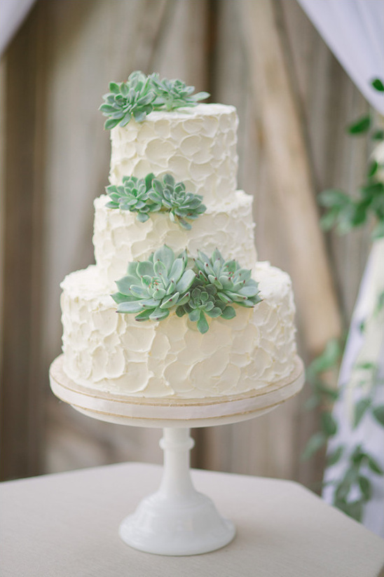 rustic wedding cakes with suculents
