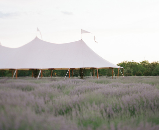 tented ceremony at an elegant lavedar farm