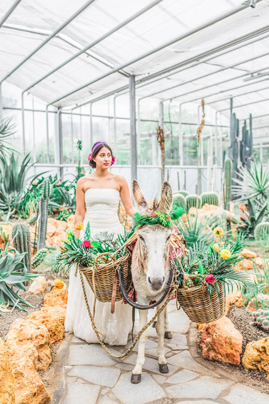 south western and mexican styled wedding