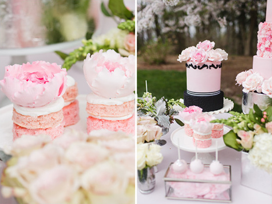 mini cakes and modern cake design