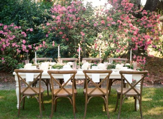 A Dignified Pink And Black Garden Party