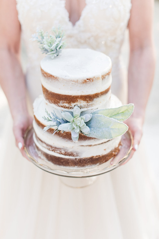 nearly naked wedding cake with succulent and dusty miller accents