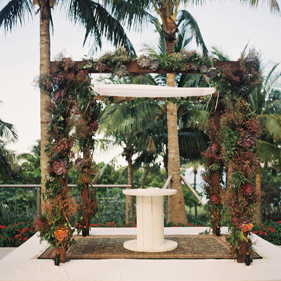 succulent covered chuppah