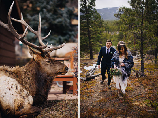 elk and hiking to the ceremony spot